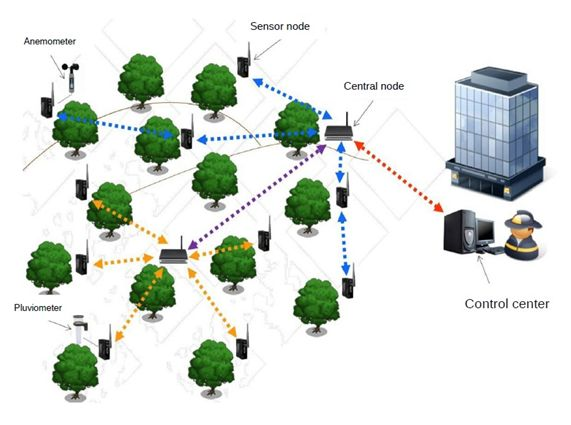 Diseñan una red de sensores contra los incendios forestales